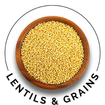 Lentils & Grains